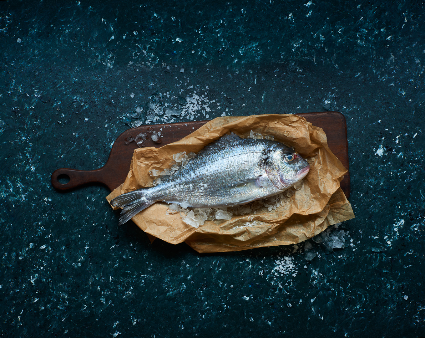 Seabream raw fish – food photography